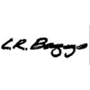 L.R Baggs